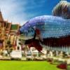 """(ขายแล้วครับ)""""คัดเกรด""""ปลากัดยักษ์ครีบสั้น-Giant Halfmoon Plakats Fancy Salamander"""