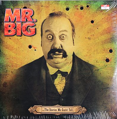 MR. BIG - The Stories We Could Tell 2lp N.