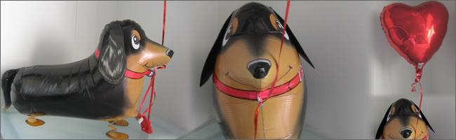 Dachshund Dog Walking Balloons - น้องหมาดัชชุนบอลลูน / TL-K014
