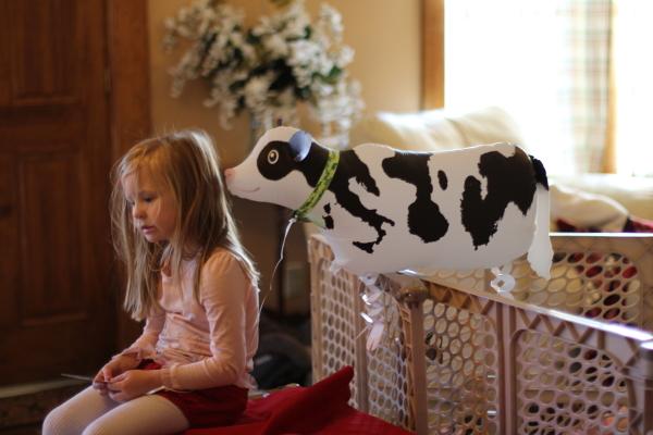 Cow Walking Balloons - วัวบอลลูน / Item No. TL-K017