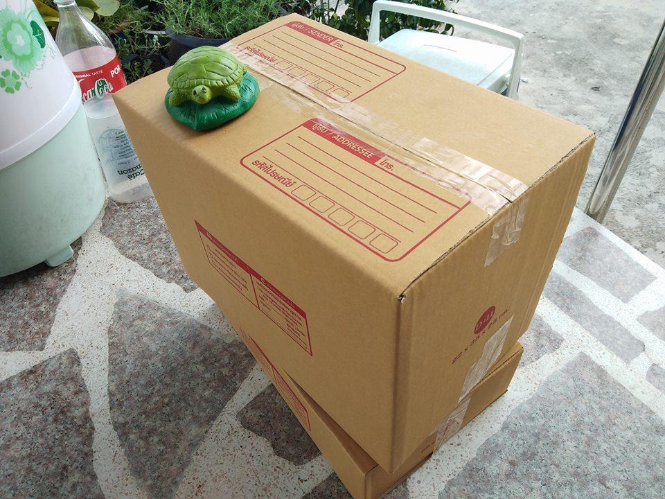 กล่องไปรษณีย์ฝาชน เบอร์ D+11 ขนาด 22x35x25