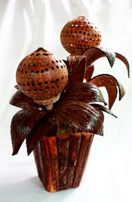Coconut Shell Lamp Flowers โคมไฟกระถางดอกไม้