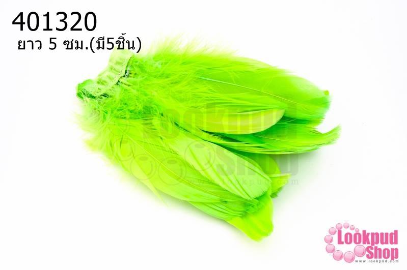 ขนนกมีริบบิ้น สีเขียวอ่อน ยาว 5 ซม.(มี5ชิ้น)