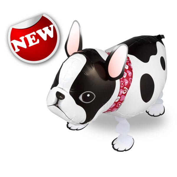 French Bull Dog Walking Balloons - เฟรนช์ บูลด็อก บอลลูน / Item No. TL-K020