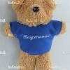 ตุ๊กตาพรีเมี่ยม Biogenomed พวงกุญแจตุ๊กตาหมียืน5นิ้ว ใส่เสื้อ+สกรีนโลโก้ 1ด้าน D5505Q2000
