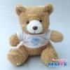 ตุ๊กตาพรีเมี่ยม โรงเรียนจันทศิริ ตุ๊กตาหมีนั่ง8.5นิ้ว ใส่เสื้อ+รีดโลโก้ 1ด้าน D5602Q0600