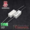 (10pcs) 10E 5W Royal Ohm