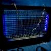 เครื่องล่อยุง และกำจัดยุง LED Mosquito Trap 2W