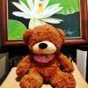 ตุ๊กตาหมีหลับ ตุ๊กตาหมีตัวเล็ก ขนาด 45 CM สีน้ำตาลเข้ม