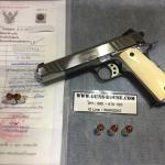 1911 Shooter Sea Hawk .45