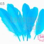 ขนนก(ก้าน) สีฟ้า (5 ชิ้น)