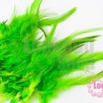 ขนนก สีเขียวอ่อน 20 ชิ้น