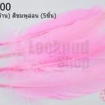 ขนนก(ก้าน) สีชมพูอ่อน (5ชิ้น)