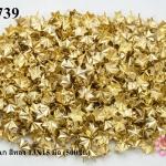 เป็กติดเสื้อ รูปดาว6แฉก สีทอง 13X15 มิล (500ชิ้น)