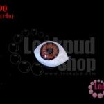 ลูกตาปลอมนัยตาสีน้ำตาล 11X16มิล (1ชิ้น)
