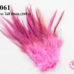 ขนนกก้าน ไล่สี สีชมพู (20ชิ้น)