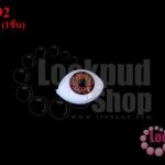 ลูกตาปลอมนัยตาสีน้ำตาล 9X13มิล (1ชิ้น)