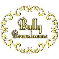 ร้านBULLY BRANDNAME