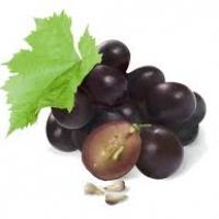 สารสกัดจากเมล็ดองุ่น Grape Seed OPC Capsules