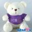 ตุ๊กตาพรีเมี่ยม SCB ตุ๊กตาหมีนั่ง11นิ้ว ใส่เสื้อ+สกรีนโลโก้ 2ด้าน D5406Q1200 thumbnail 1
