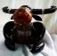ออมสินกะลามะพร้าวรูปควาย Coconut Shell Buffalo Savings thumbnail 3