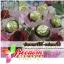 ช่อดอกไม้-เฟอเรโร่ Flower with Ferrero thumbnail 2