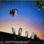 Kate Bush - Never For Ever 1980 thumbnail 2