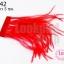 ขนนกกระจอกเทศมีริบบิ้น สีแดง (ยาว 5 ซม.) thumbnail 1