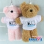 ตุ๊กตาพรีเมี่ยม Slim พวงกุญแจตุ๊กตาหมียืน5นิ้ว ใส่เสื้อ+รีดโลโก้ 2ด้าน D5507Q0500 thumbnail 2