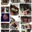 กระเป๋าน้องหมาสก็อตครีมไซด์ L thumbnail 3