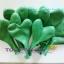"""ลูกโป่งหัวใจ เนื้อสแตนดาร์ทสีเขียวเข้ม ไซส์ 12 นิ้ว แพ็คละ 10 ใบ (Heart Latex Balloon - Dark Green Color 12"""") thumbnail 5"""
