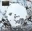 Radiohead - A Moon Shaped Pool 2Lp N. thumbnail 1