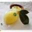 สบู่เลมอน มาดามเฮง (เหลืองลูกเล็ก)Lemon soap 50 g. มาดามเฮง yellow thumbnail 1