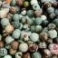 หินโอเซี่ยนแจสเปอร์ 12 มิล (จีน) (1เส้น) thumbnail 1