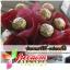 ช่อดอกไม้-เฟอเรโร่ Flower with Ferrero thumbnail 1