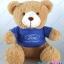 ตุ๊กตาพรีเมี่ยม Ford ตุ๊กตาหมีนั่ง11นิ้ว ใส่เสื้อ+สกรีนโลโก้ 2ด้าน D5411Q0300 thumbnail 1