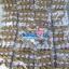ตุ๊กตาพรีเมี่ยม Slim พวงกุญแจตุ๊กตาหมียืน5นิ้ว ใส่เสื้อ+รีดโลโก้ 2ด้าน D5507Q0500 thumbnail 12