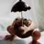 ออมสินกะลามะพร้าวกบกางร่ม Coconut Shell Frog and Umbrella Saving thumbnail 2