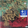 Lamb of God - ashes of the wake 1 LP.
