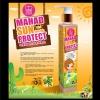 MISS KOREA MAHAD SUN PROTECT SPF50 โลชั่นมะหาดสูตรกันแดด