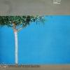 Alex Degrassi - Turning Turning Back 1978 1lp