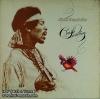 Jimi Hendrix - Crash Londing 1lp