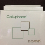 Celluphase ( Italy )
