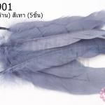ขนนก(ก้าน) สีเทา (5ชิ้น)