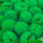 ปอมปอมไหมพรม สีเขียว 1ซม (100ชิ้น)