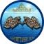 ร้านLoveBettaFish.com - ขายจำหน่ายปลากัดไทย สำหรับคนรักปลาสวยงาม