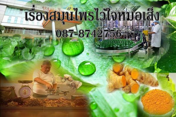 หมอเส็งสมุนไพรไทย
